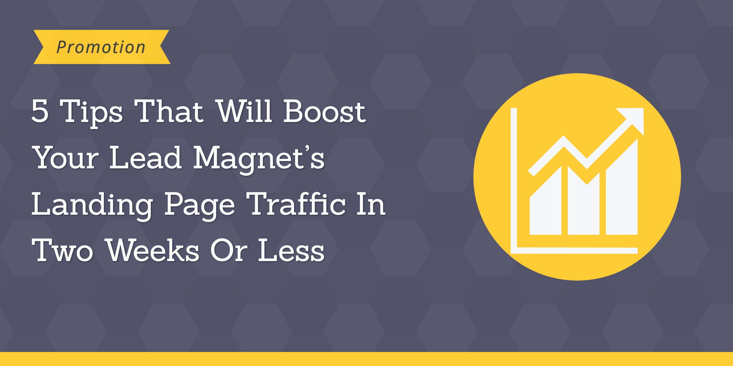 lead magnets landing page traffic