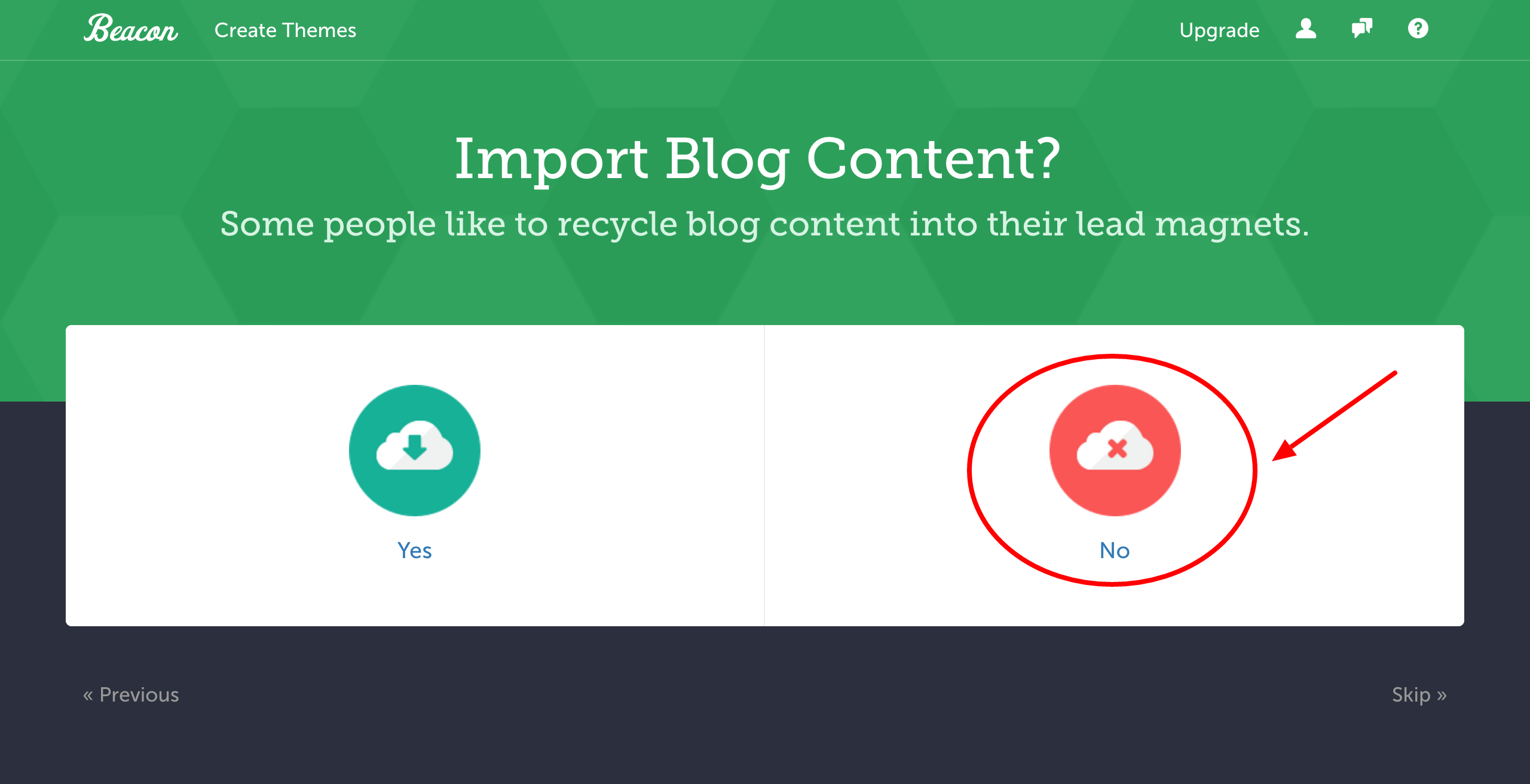 lead magnet don't import content